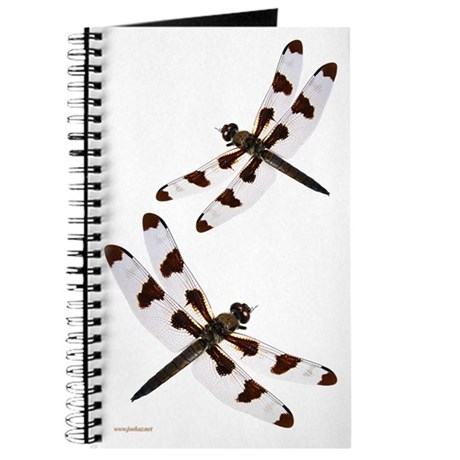 Dragonfly 2 Journal 2