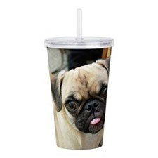 Pugsley The Pug Acrylic Double-wall Tumbler