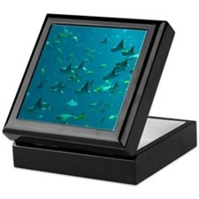 Stingrays Keepsake Box
