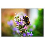 Humble Bumblebee Large Poster