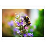 Humble Bumblebee Small Poster