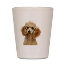 Apricot Poodle Puppy Shot Glass