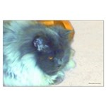 Cat lover's Blue Persian -art Large Poster