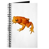 Golden Toad (Bufo Periglenes) Journal