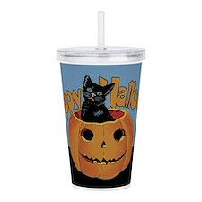 pumpkin-cat-vintag-hh_s.png Acrylic Double-wall Tu