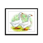 Embden Goose Pair Framed Panel Print