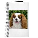 King Charles Spaniel Journal