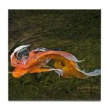 &quot;Butterfly Koi Turns&quot;  ---    Tile Coaster