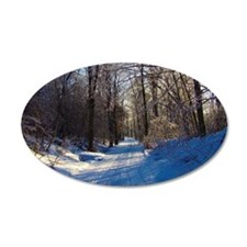 Snow Trail Scenery Wall Decal