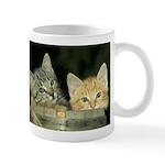 Fur Babies Coffee Mug