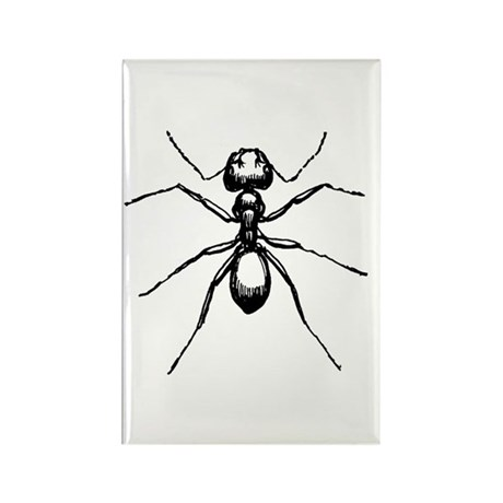 Carpenter Ant Rectangle Magnet (100 pack)