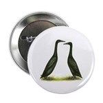 Black Runner Ducks Button