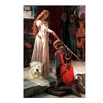 Princess & Wheaten Postcards (Package of 8)