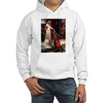 Princess & Wheaten Hooded Sweatshirt
