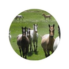 "Cute Appaloosa horses 3.5"" Button (100 pack)"