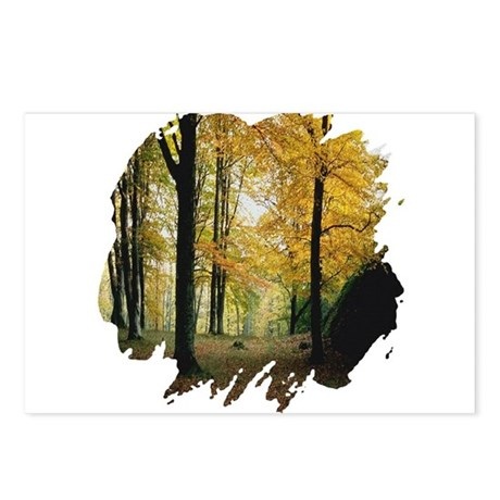 Autumn Woods Postcards (Package of 8)