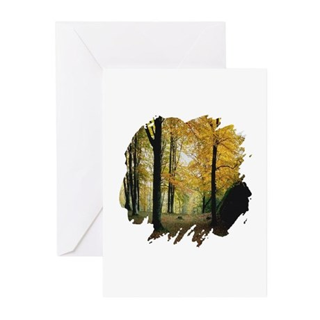Autumn Woods Greeting Cards (Pk of 10)