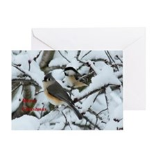 Chickadee and Tufted Titmouse Greeting Cards