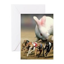 dogs2 Greeting Cards