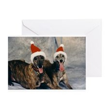 Unique Pet art Greeting Cards (Pk of 10)