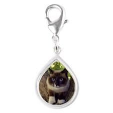 Cool Snowshoe cat Silver Teardrop Charm