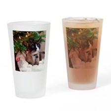 December15SSN1 Drinking Glass