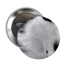 "eye 2.25"" Button"