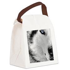 eye Canvas Lunch Bag