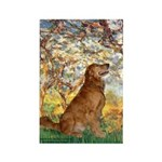 Spring & Golden (#12) Rectangle Magnet (10 pack)