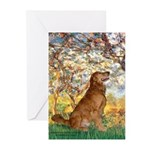 Spring & Golden (#12) Greeting Cards (Pk of 10)