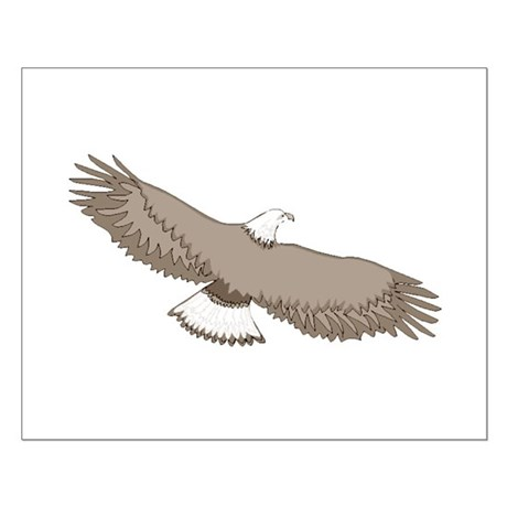 Bald Eagle Small Poster