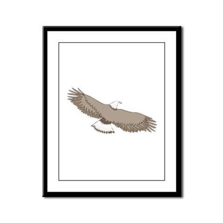 Bald Eagle Framed Panel Print