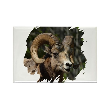 Bighorn Sheep - Ram Rectangle Magnet