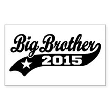Big Brother 2015 Decal