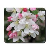 Cherry Blooms Mousepad