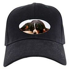 Bernese Being Coy - Baseball Hat