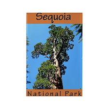 Sequoia National Park (Vertic Rectangle Magnet