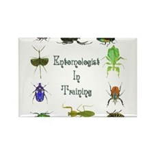 Entomologist In Training 2 Rectangle Magnet (10 pa