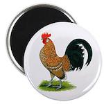 Dutch Bantam Rooster Magnet