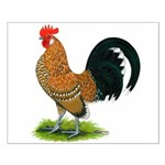 Dutch Bantam Rooster Small Poster