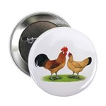 "Buff Catalana Chickens2 2.25"" Button (100 pac"