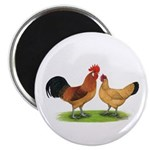 "Buff Catalana Chickens2 2.25"" Magnet (100 pac"