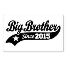 Big Brother Since 2015 Decal