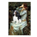 Opohelia & Tri Cavalier Postcards (Package of 8)