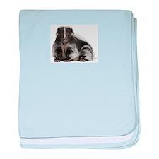 Cute Skunk baby blanket