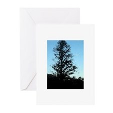 Arboretum Greeting Cards (Pk of 10)