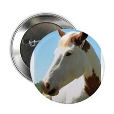 "Unique Quarter horse 2.25"" Button (100 pack)"