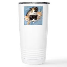 shelter-kittensDSC05383 Stainless Steel Travel Mug