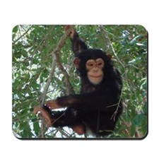 Cool Apes Mousepad