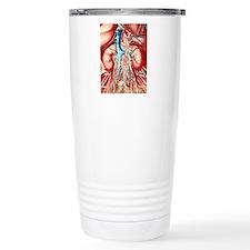 Colour artwork of kidne Travel Mug